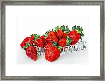 Strawberry Still Life Framed Print by Regina Geoghan