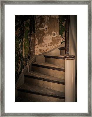 Framed Print featuring the photograph Stray Cat by Odd Jeppesen