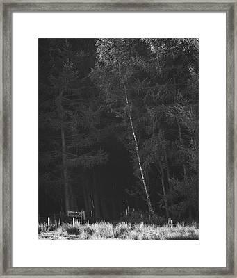 Streak Of Silver Framed Print