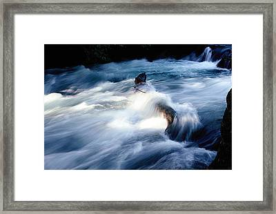 Framed Print featuring the photograph Stream 2 by Dubi Roman