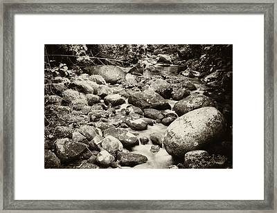 Framed Print featuring the photograph Nature In Silent by Amarildo Correa