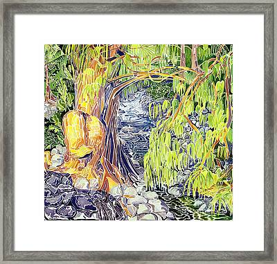 Stream At Laupahoehoe Framed Print