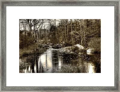 Framed Print featuring the photograph Stream I by Greg DeBeck