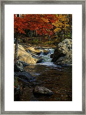 Stream In Autumn No.17 Framed Print