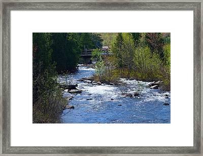 Stream In Spring Framed Print