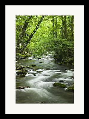 Tennessee River Framed Prints