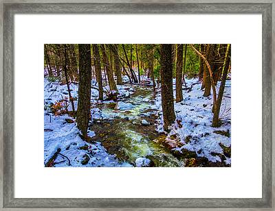Stream Through Winter Woods Framed Print by Garry Gay