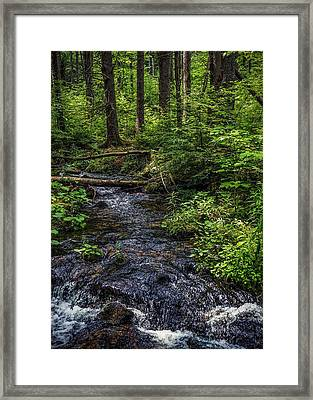 Framed Print featuring the photograph Streaming by Kendall McKernon