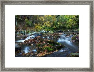 Streaming Through The Season Framed Print by Mike Eingle