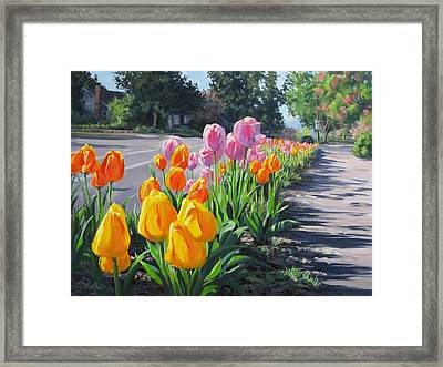 Street Tulips Framed Print