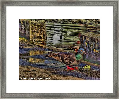 Street Walker Framed Print