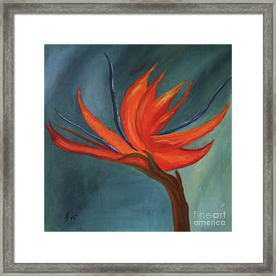 Strelizia Framed Print by Christiane Schulze Art And Photography
