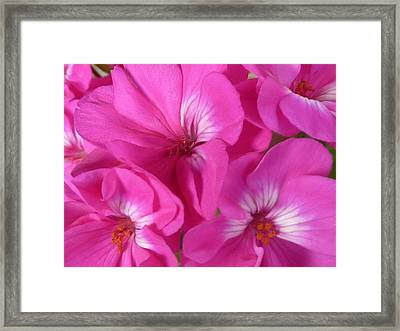 Strength And Beauty Framed Print