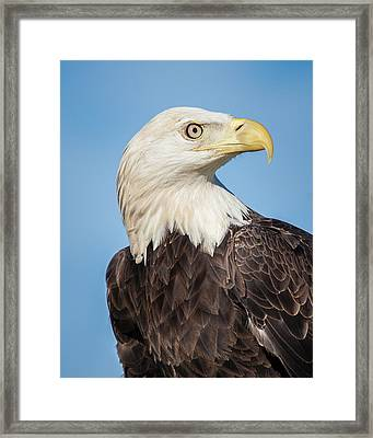 Strength And Determination Framed Print
