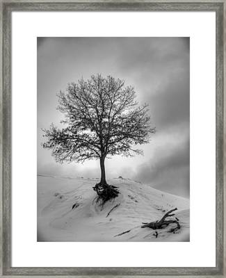 Strength And Hope 2011 Framed Print