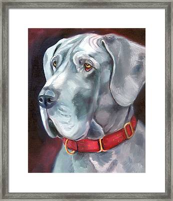 Strength And Loyalty - Great Dane Framed Print