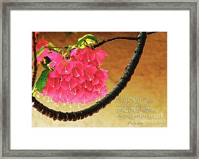 Strength And Peace Framed Print