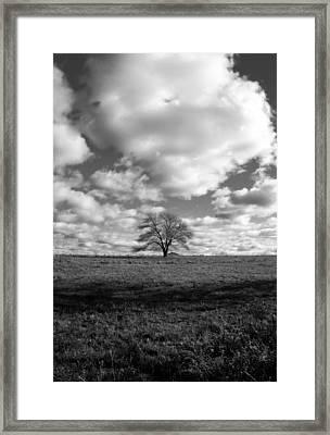 Strength II Framed Print by Mark Wiley