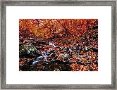 Framed Print featuring the photograph Stress Relief by Edward Kreis