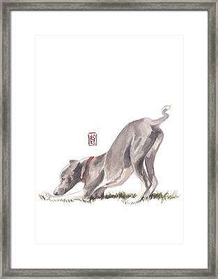 Stretching Italian Framed Print by Debra Jones