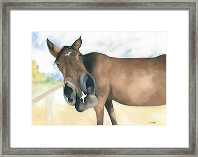 Stretch...your Perspective Framed Print by Kimberly Lavelle