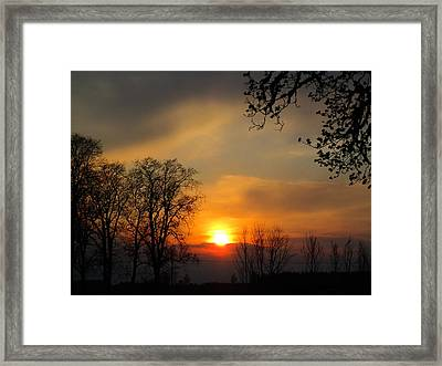 Striking Beauty Framed Print