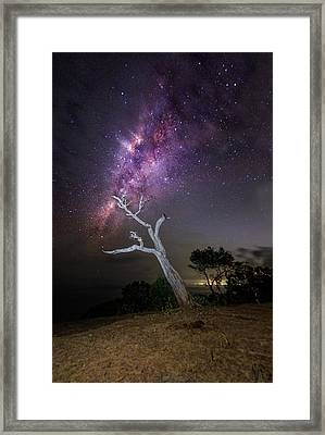Framed Print featuring the photograph Striking Milkyway Over A Lone Tree by Pradeep Raja Prints
