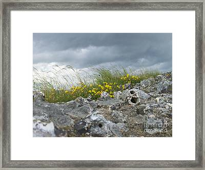 Striking Ruins Framed Print