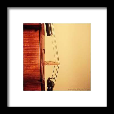 String Instrument Framed Prints