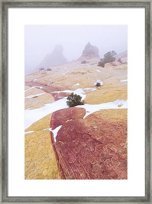 Stripe Framed Print by Chad Dutson