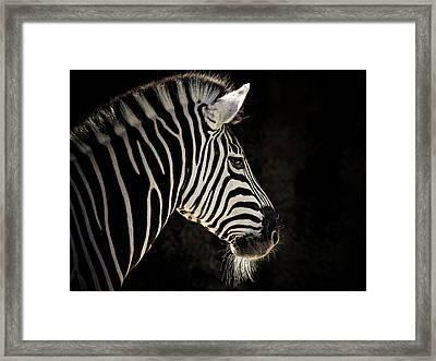 Striped Framed Print