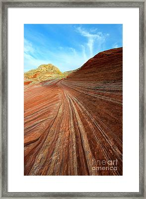Stripes Framed Print by Mike Dawson