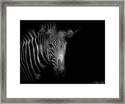 Stripes Number 5 Framed Print