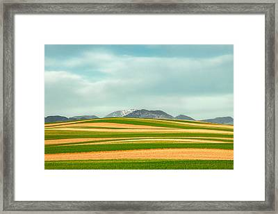 Stripes Of Crops Framed Print