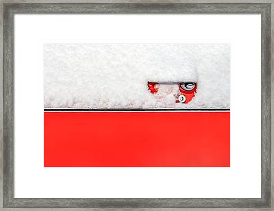 Stripes Of Impala Framed Print