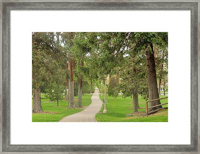 Stroll Framed Print