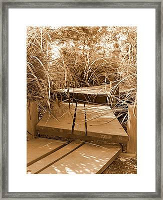 Stroll Garden Walkway Framed Print by Audrey Venute