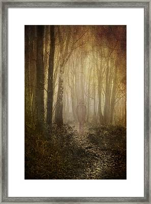 Stroll Through My Mind Framed Print by Meirion Matthias