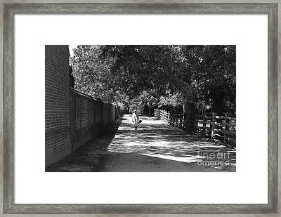 Stroll To Store Framed Print by Eric Liller