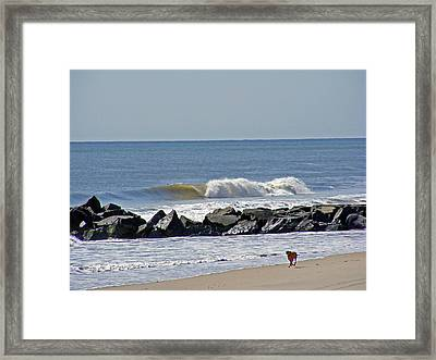 Strollin' The Jersey Shore Framed Print
