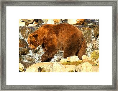 Strolling By The Falls Framed Print by Adam Jewell