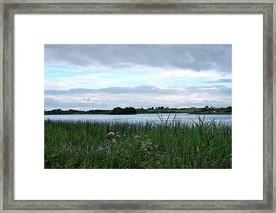 Framed Print featuring the photograph Strolling By The Lake by Terence Davis