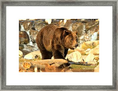 Strolling By The Waterfall Framed Print by Adam Jewell