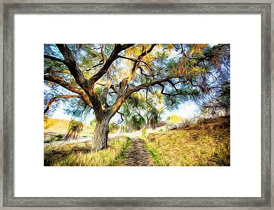 Strolling Down The Path Framed Print