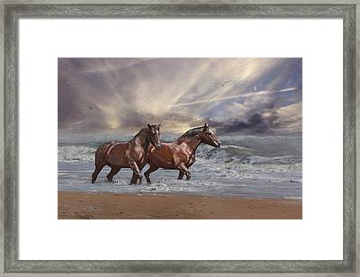 Strolling On The Beach Framed Print