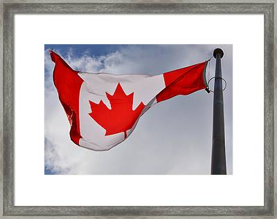 Strong And Free Framed Print by Richard Andrews