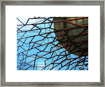 Structure Framed Print by Alina Davis
