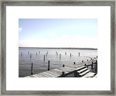 Stubs In Water Framed Print
