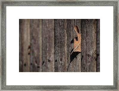 Framed Print featuring the photograph Stuck by Karol Livote