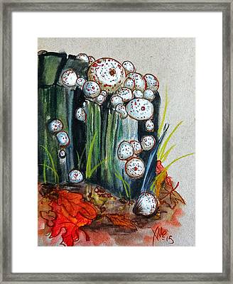 Studded Puffball Study Framed Print